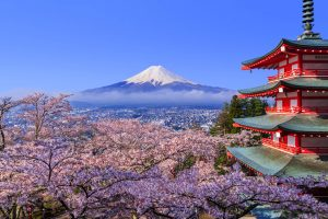 Didn't get to see Mount Fuji due to bad weather? Hotel Mount Fuji has you covered!