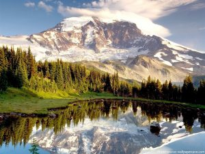 Interesting facts about Mount Rainier National Park  Just Fun Facts