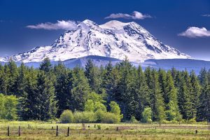 Mt Rainier National Park… – Decrepitude and Other Beautiful Images…….